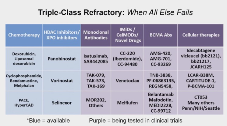 Triple-Class Refractory Myeloma Drug Regimens Table